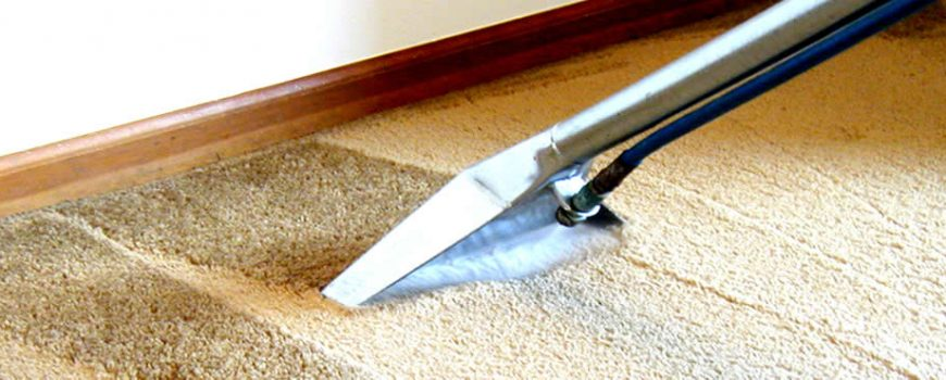 domestic carpet cleaner swansea
